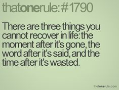 There are three things you cannot recover in life: the moment after it's gone, the word after it's said, and the  time after it's wasted.