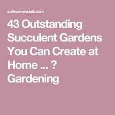 43 Outstanding Succulent Gardens You Can Create at Home ... → Gardening