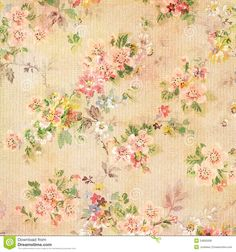 Shabby Chic Vintage Antique Rose Floral Wallpaper Royalty Free Stock Photos - Image: 24855938