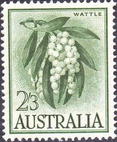 Picture of AUSTRALIA - CIRCA A stamp printed in Australia shows wattle, circa 1959 stock photo, images and stock photography. Australian Painting, Australian Plants, Advance Australia Fair, Buy Stamps, Stamp Printing, Flower Stamp, Vintage Stamps, Stamp Collecting, Native Plants