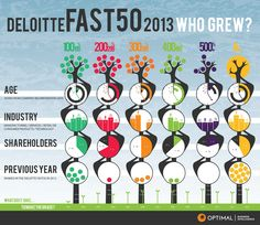 Deloitte Fast50 2013 #segmentation #infographic #NewZealand Previous Year, Infographics, Technology, Information Graphics, Tech, Infographic, Tecnologia, Infographic Illustrations, Engineering