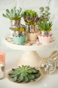 Succulents-Wedding-Favors    The intimate table is layered with textures and soft colors, and features a lush garden-style centerpiece in shimmering carnival glass.  Each mismatched place setting includes a small succulent favor inside a mercury glass votive holder.