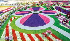 The most amazing Garden in the world - Dubai Miracle ~ Dreamy Nature