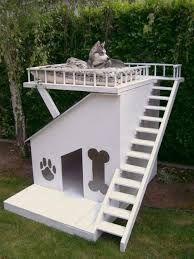 Dat is nog eens een cool huis voor hondjes