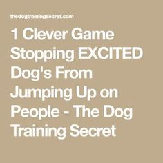 1 Clever Game Stopping EXCITED Dog's From Jumping Up on People - The Dog Training Secret