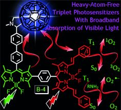 Energy-Funneling-Based Broadband Visible-Light-Absorbing Bodipy–C60Triads and Tetrads as Dual Functional Heavy-Atom-Free Organic Triplet Photosensitizers for Photocatalytic Organic ReactionsDOI:10.1002/chem.201302492
