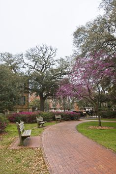 """""""Benches In A Park That Allow People To Stop And Appreciate Things"""" by Jordan Powers, via 500px. / Oglethorpe Square with Telfair's Owens-Thomas House and historic Presidents' Quarters Inn in background, #Savannah GA USA"""