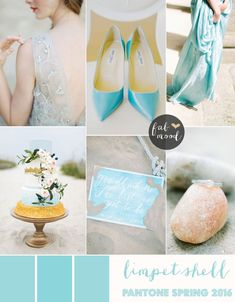 Limpet shell wedding giveaways