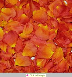 Eco-friendly, freeze dried Living Easy Rose Petals from Flyboy Naturals are wonderful for decorating at weddings & special events. A Natural, elegant addition...they are non-staining, not slippery, bio-degradable.  Create an aisle with the petals, decorate your cake table, reception tables, a modern guest toss a perfect send off for the happy couple, your flower girl will love to toss them as she walks down the aisle! Visit our site &  save:  http://www.flyboynaturals.com