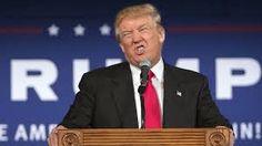 Image result for crazy trump