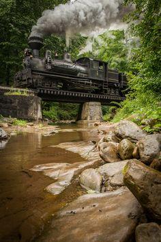 Leatherbark Creek, West Virginia - Cass Scenic Railroad.