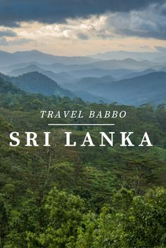 If you don't have Sri Lanka on your travel wish list, you should! Here's what I loved about central Sri Lanka and why you should go.