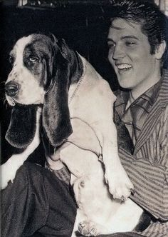 You ain't nothing but a hound dog smile