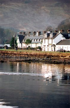 ~Skye of the Highlands~Glen Isle Hotel, Scotland, Isle of Arran Scotland Travel, Scotland Trip, Isle Of Arran, Scottish Islands, British Isles, Great Britain, Places To Go, Beautiful Places, Around The Worlds