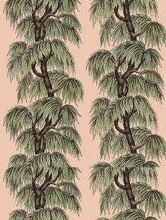 Babylon Blush Willow Wallpaper afflink