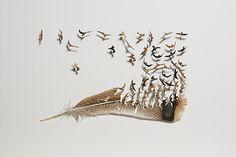 My Owl Barn: Cut Feather Artwork by Chris Maynard