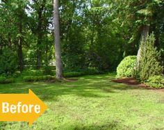 andsew before garden makeover Garden Makeover, Backyard Retreat, Shades, Landscape, Plants, Outdoor, Projects, Outdoors, Log Projects
