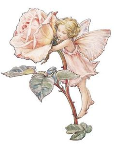 Best and dearest flower that grows, Perfect both to see and smell; Words can never, never tell Half the beauty of a Rose- Buds that open to disclose Fold on fold of purest white, Lovely pink, or red that glows Deep, sweet-scented. What delight To be a Fairy of the Rose!