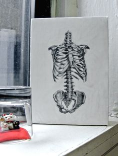 i get so excited about anatomy and physiology based art!!