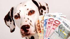 Bolaffi, azienda italiana della numismatica, farà partire un'asta dalla cifra di 2.500 euro per le centinaia di monete da 1 centesimi coniate per errore con il diametro e l'immagine al dritto della moneta da 2 centesimi, la Mole antonelliana. Nel 2002 l'azienda torinese aveva annunciato l'acquisizione di sei esemplari dell'errore di conio rinvenuti in alcuni …