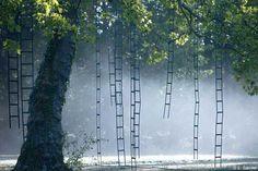 « L'arbre aux échelles », <br/>Chaumont-sur-Loire, 2009
