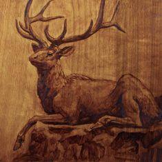 Elk, Oil on wood Panel