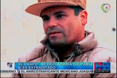 El Chapo Se Declararía Culpable Si Es Extraditado #Video