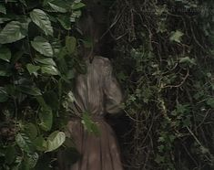 "I love this image as it reminds me of my favourite song, ""Under the Ivy"" by Kate Bush (1985)"