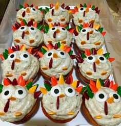 Cupcakes decorated with home made cream cheese and pecan frosting, and a Turkey decorating candy pack.