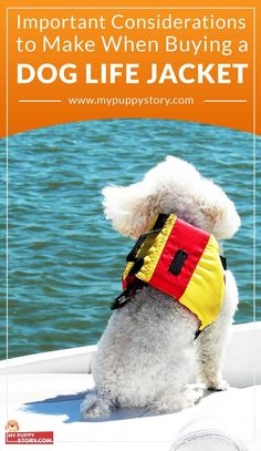 DOG LIFE JACKET - I believe I speak for most dog owners when I say a dog life jacket shouldn't be a regular purchase like a grocery. It isn't so much about money savings as it is about a quality product holding its own in the event of an emergency. mypuppystory.com
