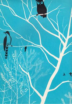 Birds Everywhere by Jean Dorst, illustrated by Pierre Probst (1963).