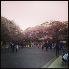 上野 (Ueno)