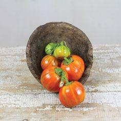 Turkish Orange Eggplant from Baker Creek Seeds (started 24 Jan 2013)
