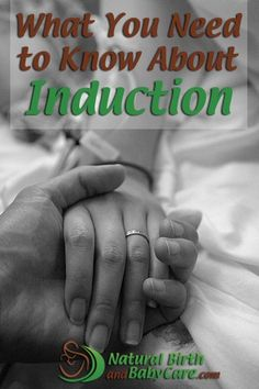 What You Need to Know About Induction banner