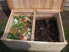Vermicomposting: Composting Kitchen Waste With Worms - Vermicomposting Kitchen Waste, Fresh Flowers, Terrarium, Ideas, Joy, Gardening, Gardens, Worm Farm, Ornamental Plants