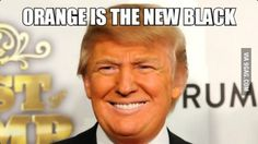 Donald J. Presidential Campaign Slogans, Political Slogans, Orange Is The New Black, What Is Like, Donald Trump, Laughter, Politics, Humor, Words
