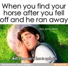 well I actually just got off my horse to check something on his leg and he took off. I was not happy! Pretty Horses, Horse Love, Beautiful Horses, Beautiful Cats, Funny Horse Memes, Funny Horses, Horse Humor, Equestrian Memes, Equestrian Problems