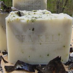 Sea Kelp Varech with Organic Cocoa Butter Excellent Facial (*Unscented Soap) Natural Handcrafted Soaps LLC http://www.amazon.com/dp/B001AKP7SY/ref=cm_sw_r_pi_dp_DaiWub1JGB5G0