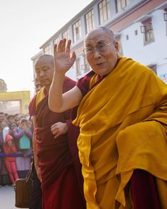 541 Best Hello dalai! images in 2019