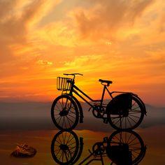 Golden romantic world: Beautiful Sunset/sunrise Sunlight Peaceful cycling road Amazing Silhouette Evening/morning Bike Bicycle Sky Splendor Nature Velo Biking, Old Fashioned Bicycle, Skier, Velo Vintage, Sunset Silhouette, Bike Silhouette, Old Bikes, Bike Art, Jolie Photo