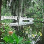 Places to visit in Charleston,  SC...Magnolia Plantation & Gardens, whirling waters, etc.