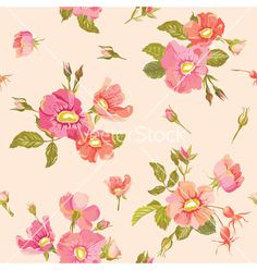 vintage Roses background vector by woodhouse84 on VectorStock®