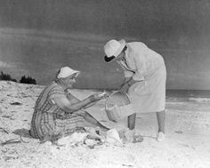 Always a great time gathering shells at Sanibel Island! (1948) | Florida Memory