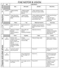 typical motor development milestone guidelines 5 year