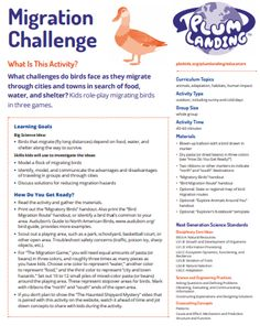 Great Backyard Bird Count, Bird Migration, Threes Game, Challenges, Activities, Education, Learning, Games, Studying