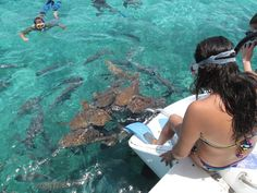8 razões para visitar o Belize... imediatamente! | Viaje Comigo