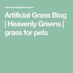 Artificial Grass Blog | Heavenly Greens | grass for pets