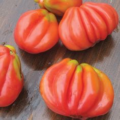 Gezahnte Tomato- paste type from Baker Creek Heirloom Seeds
