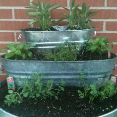 My inspired herb garden! Love Pintrest!!