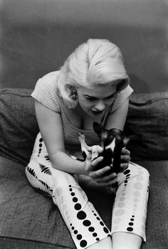 Not published in LIFE. Jayne Mansfield with her pet Chihuahua, at home in Hollywood, 1956. Photo by Peter Stackpole.